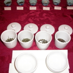 Professional Tea Cupping Session